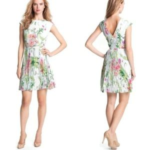 Ted Baker Wallpaper Floral Pleated A-Line Dress